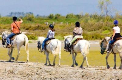 Camargue Equitation