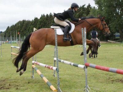 Horse Show Jumping