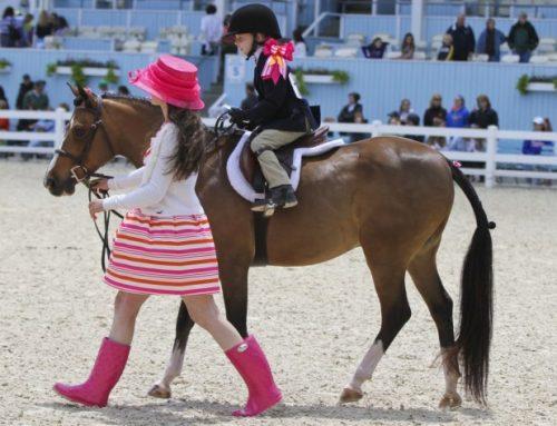 Leadline Horse Shows