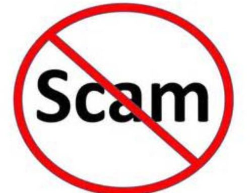 Pet Classifieds Information – Beware of Scams