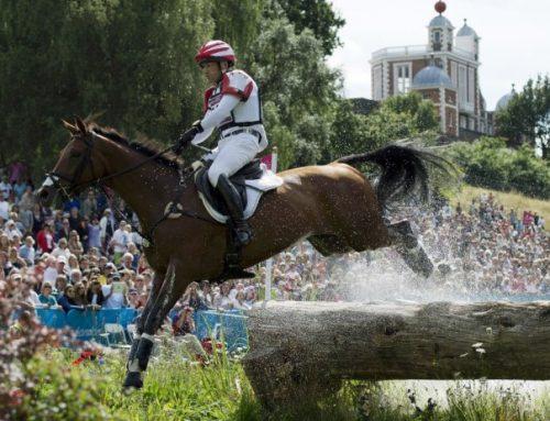 RHINELANDER and WURTTEMBERGER Horses